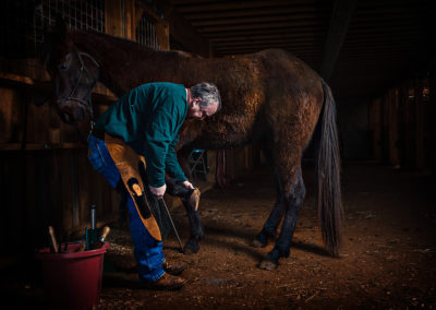 Man in a barn with a horse handling horse feet